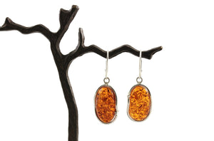 Cognac Baltic Amber and Sterling Silver Wavy Earrings on branch