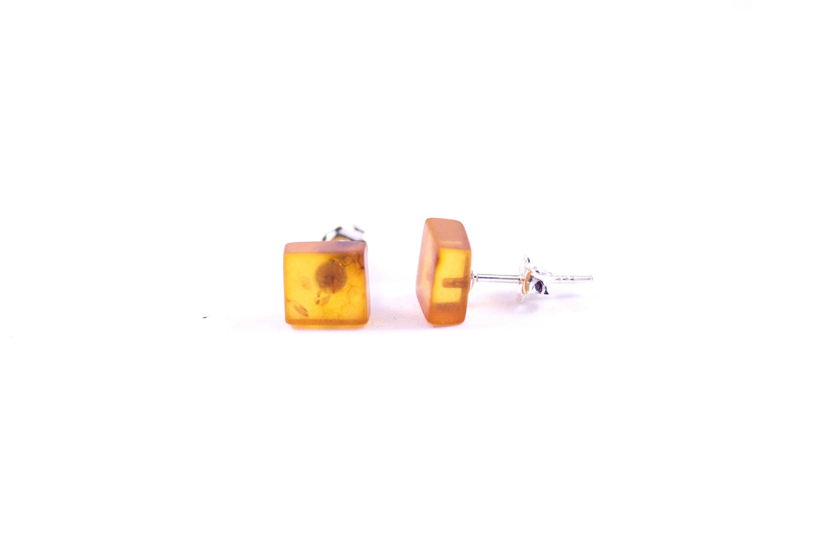 Cognac Baltic Amber and Sterling Silver Square Stud Earrings on wood