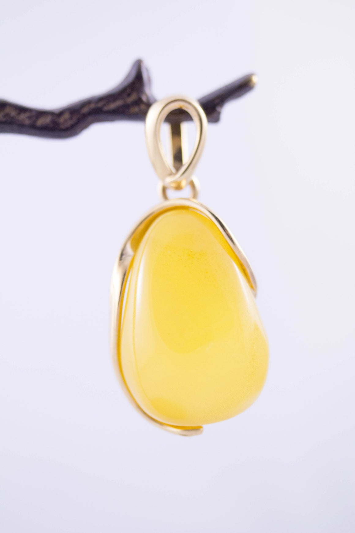 Butterscotch Baltic Amber and Gold Plated Sterling Silver Pendant on tree