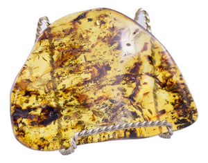 Huge piece of Dominican Amber with display stand