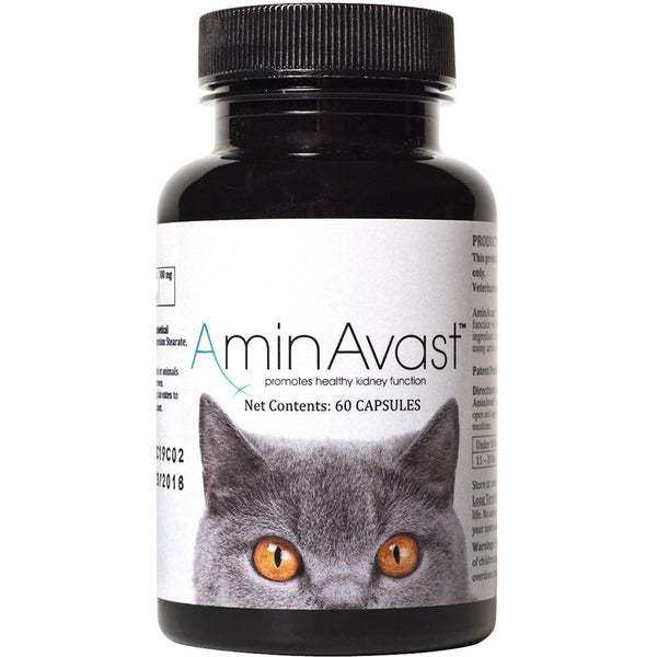 AminAvast Kidney Support for Dog and Cats - 60 Capsules - Countryside Pet Supply