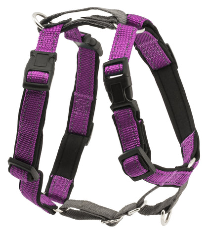 PetSafe 3-in-1 Harness Plum