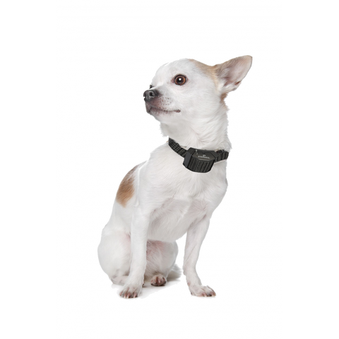 Eyenimal Miniature Static Bark Control Collar