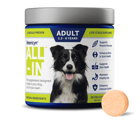 Vetericyn All-In Well-Being Supplement for Adult Dogs - CountrysidePet.com
