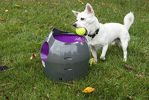 PetSafe Automatic Ball Launcher - PTY00-14665 - Countryside Pet Supply - 3