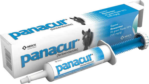 Panacur Dewormer Equine Paste 10% Fenbendazole Apple Cinnamon Flavor (25 Gram)
