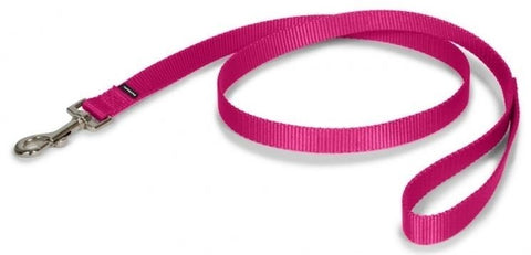 PetSafe Nylon Leash Raspberry