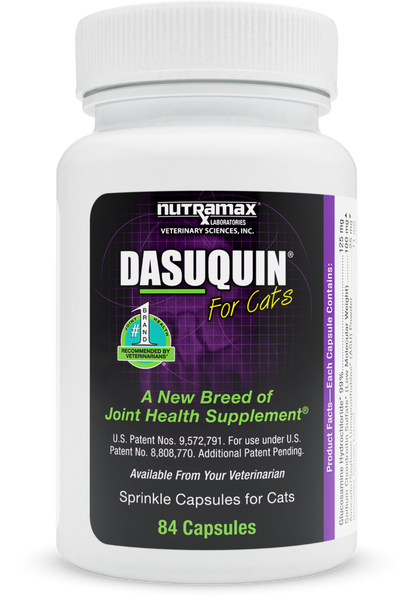 Dasuquin Joint Health Supplement for Cats - CountrysidePet.com