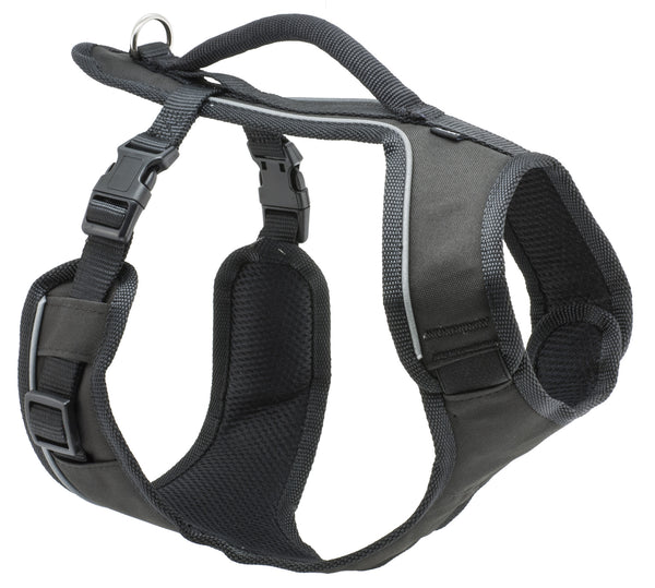 PetSafe EasySport Harness for Dogs - 3 Sizes & 5 Colors