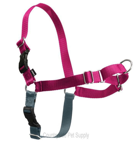 PetSafe Easy Walk Harness Raspberry/Silver
