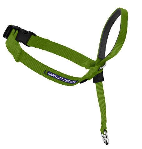 Gentle Leader Head Collar - Apple
