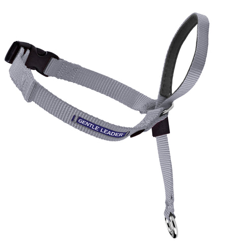 Gentle Leader Head Collar - Silver