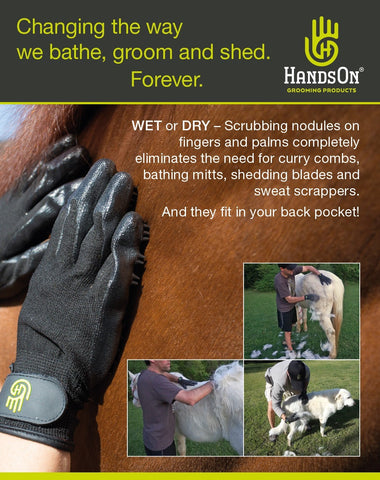 HandsOn Grooming Gloves Infographic