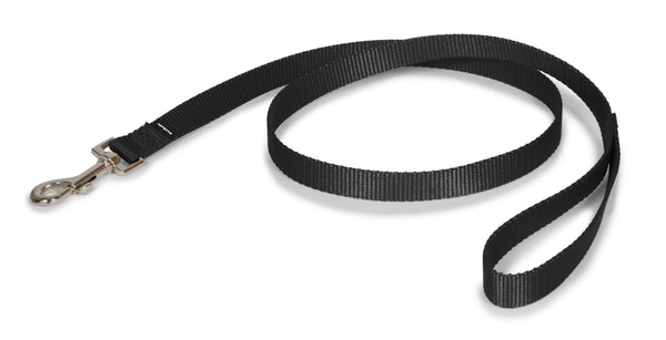 PetSafe Nylon Leash