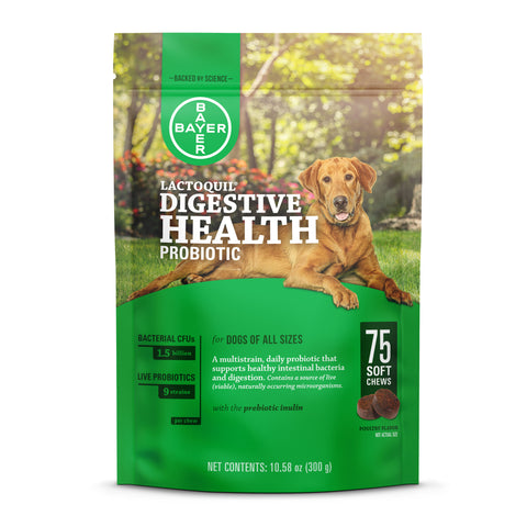 Lactoquil Digestive Health Probiotic at Countrysidepet.com