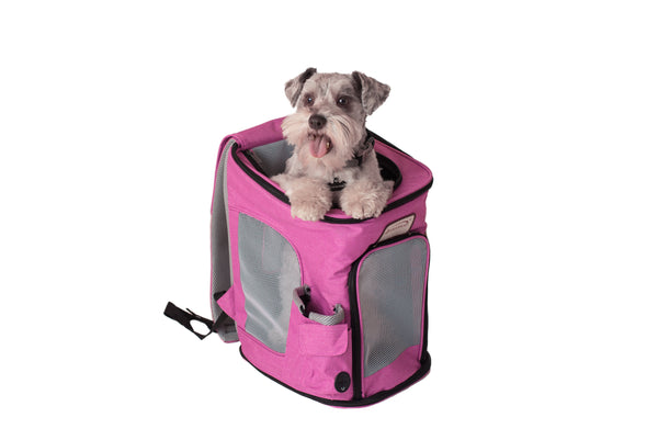 Pet Carrier Backpack for Small Pets Pink/Black - CountrysidePet.com