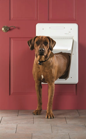 PetSafe SmartDoor for Large Dogs - Countryside Pet Supply