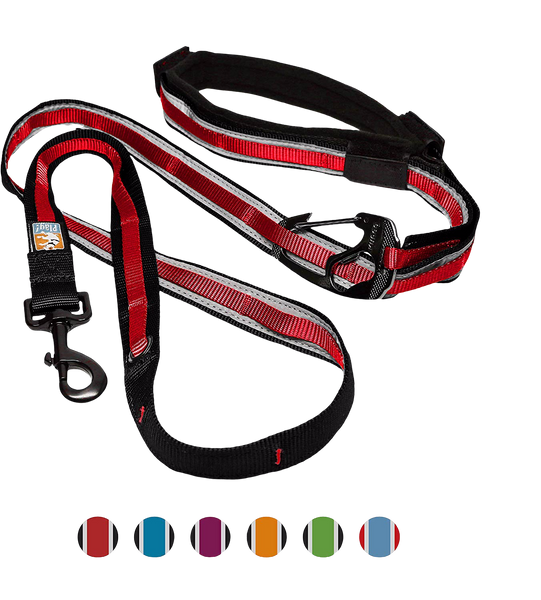 Kurgo 6-In-1 Quantum Hands Free Reflect & Protect Dog Leash at Countrysidepet.com