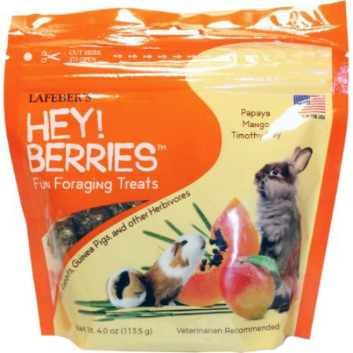 Lafeber's Hey!Berries Fun Foraging Treats for Small Herbivores - 4 oz