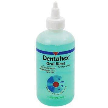 Dentahex Oral Rinse for Dogs and Cats by Vetoquinol - 8 Ounce