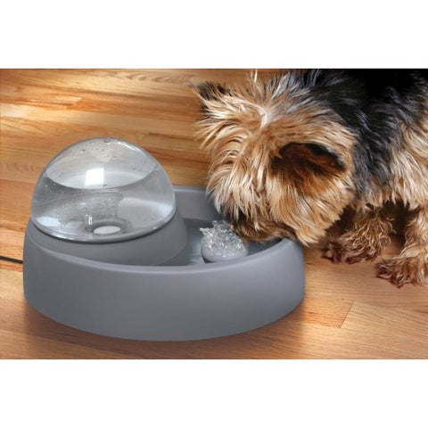 Eyenimal Bubbling Pet Fountain In Use - Countryside Pet Supply