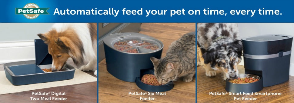 Automatically feed your pet on time, every time.