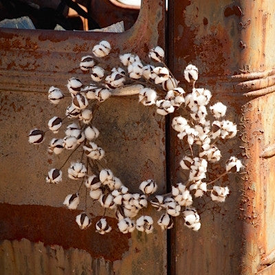 Cotton Wreath 22
