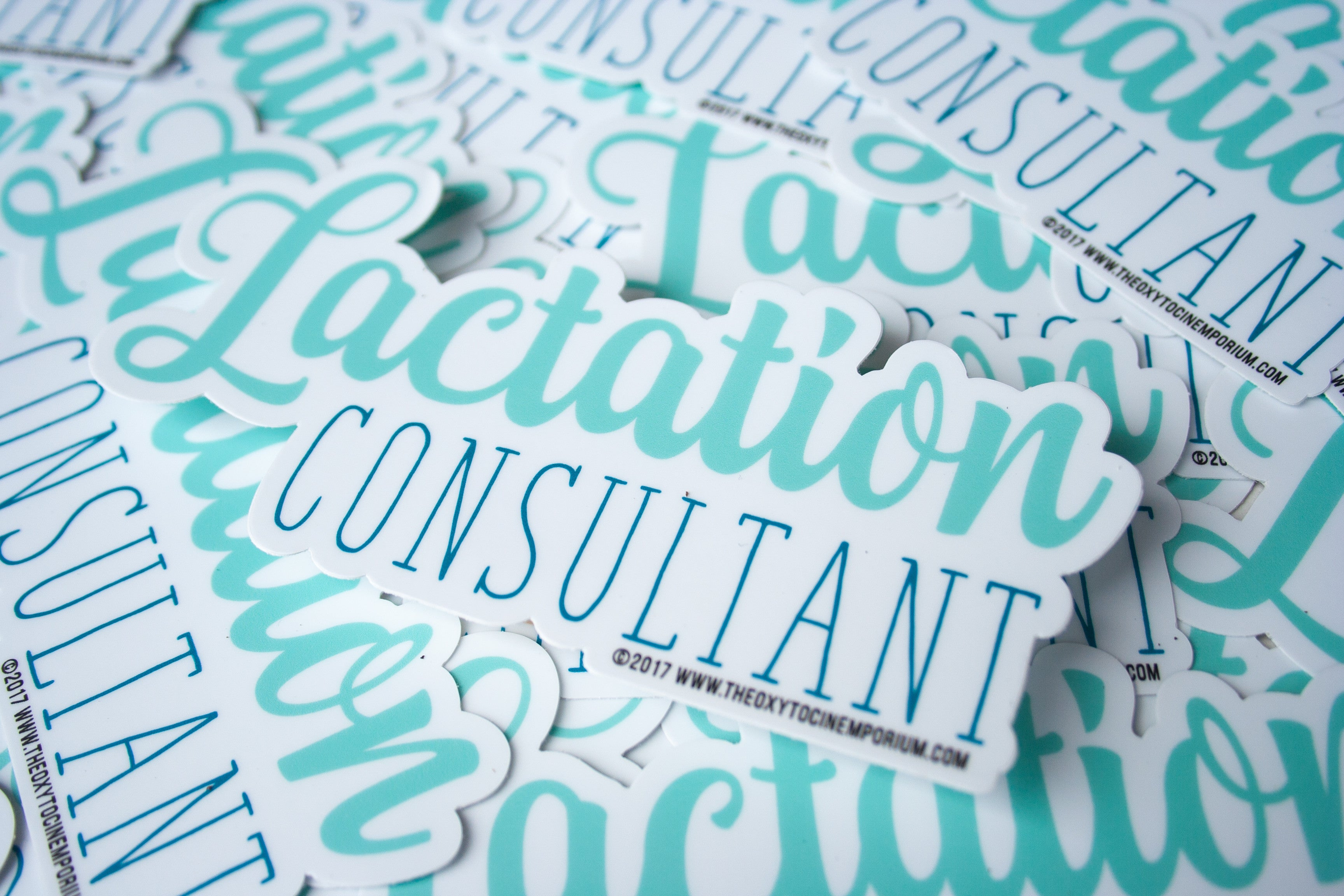 """Lactation Consultant"" Calligraphy Vinyl Sticker"