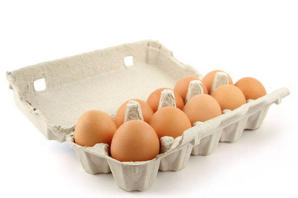 "FREE-RANGE ""PASTURED"" EGGS"