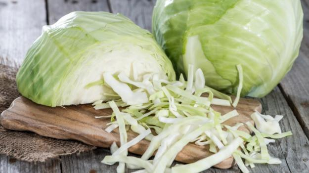 Cabbage, white