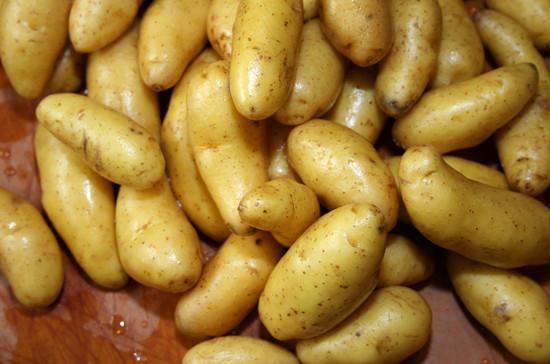 Potatoes, Fingerling