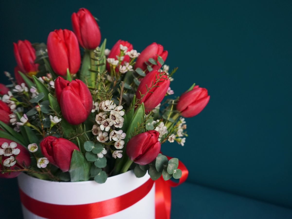 Tulips in a box / 17 /