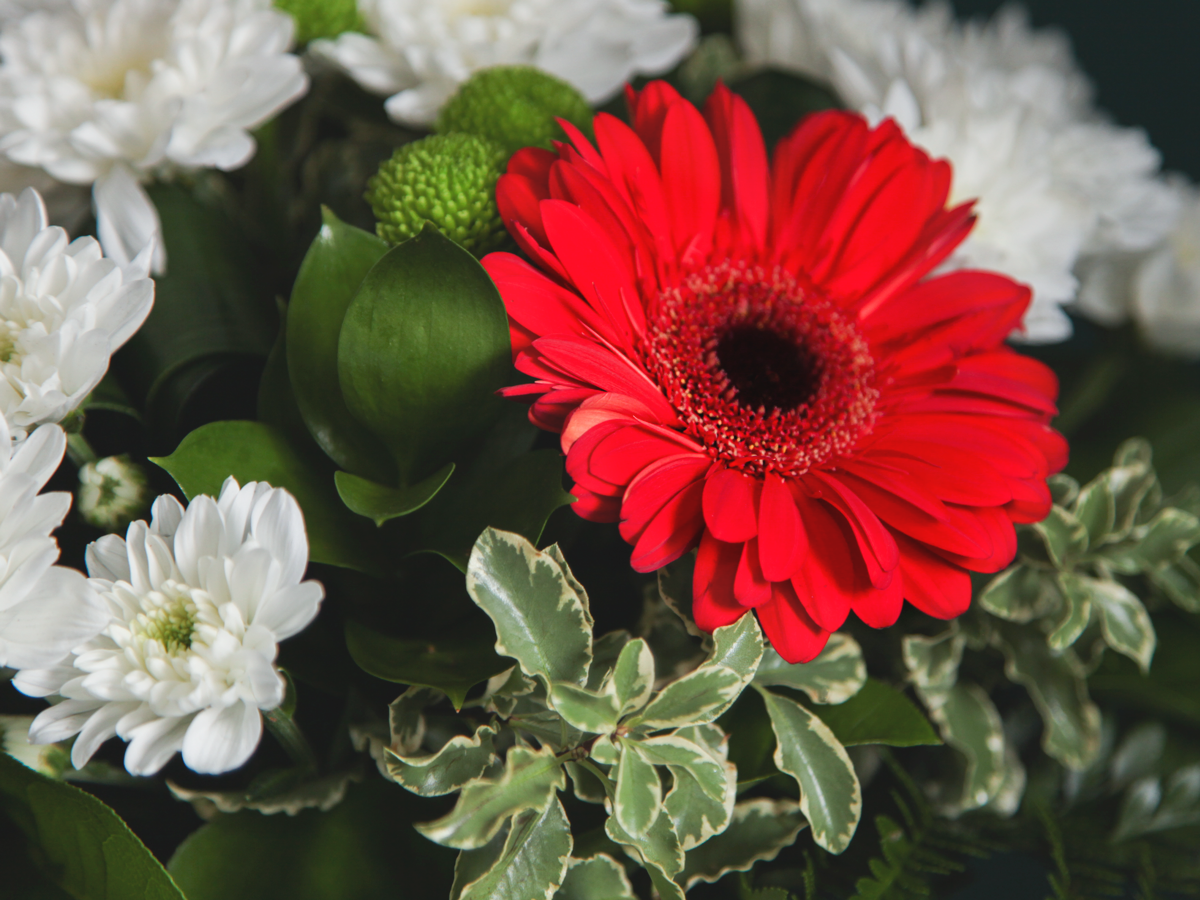 Bouquet of flowers with gerberas / 01 /