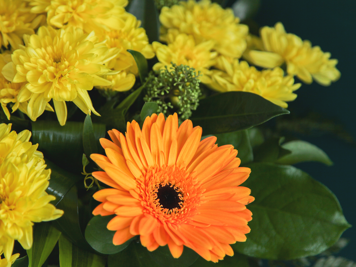 Bouquet of flowers with gerberas / 02 /