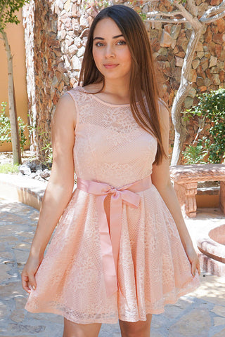 Secret Kiss Blush Pink Lace Skater Dress
