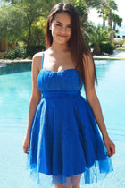 Into The Night Royal Blue Skater Dress 1