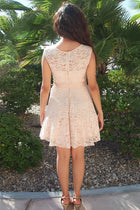 It's Now Or Never Beige Lace Skater Dress 4