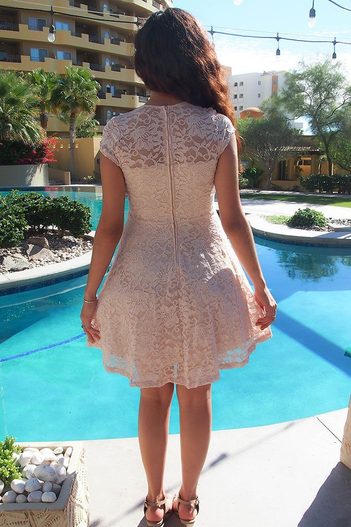 Love You Always And Forever Beige Lace Skater Dress 3