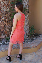 Secret Crush Pink Lace Halter Shift Dress 2