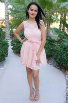 Secret Kiss Blush Pink Lace Skater Dress 2