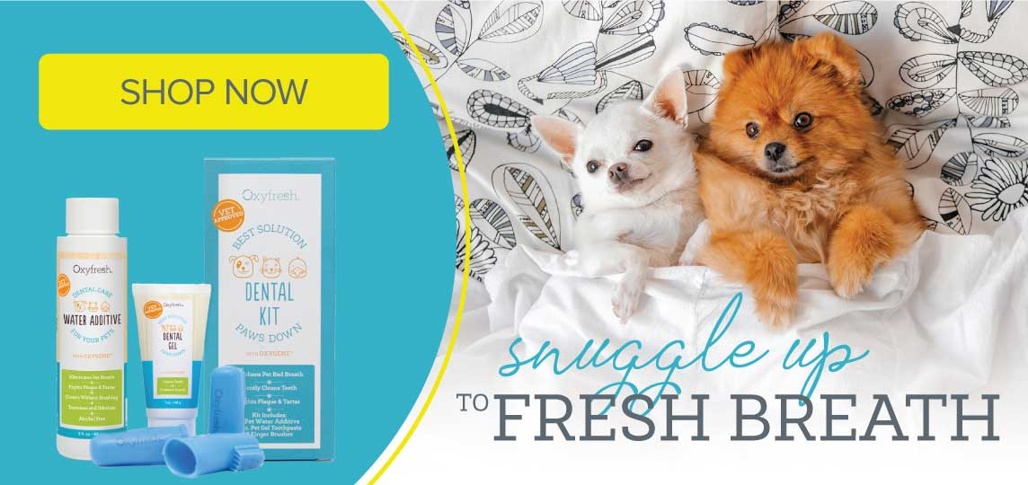 Oxyfresh - Get rid of wet dog smell and cure ear mites