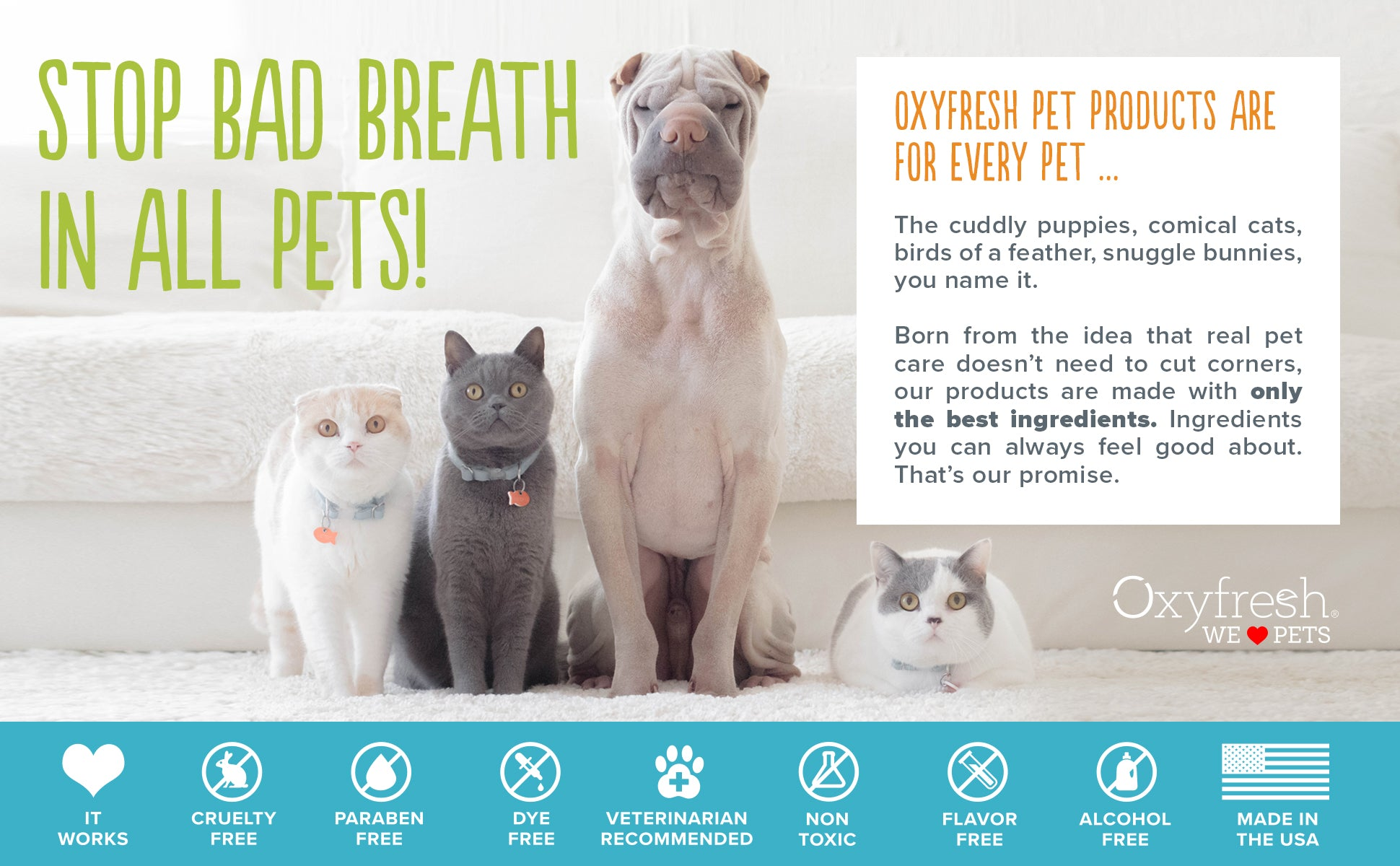Oxyfresh - Stop bad breath in all pets