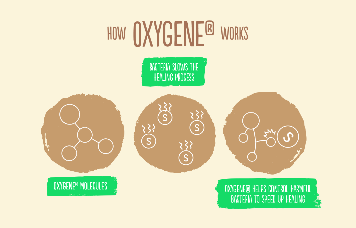 How Oxygene® Works