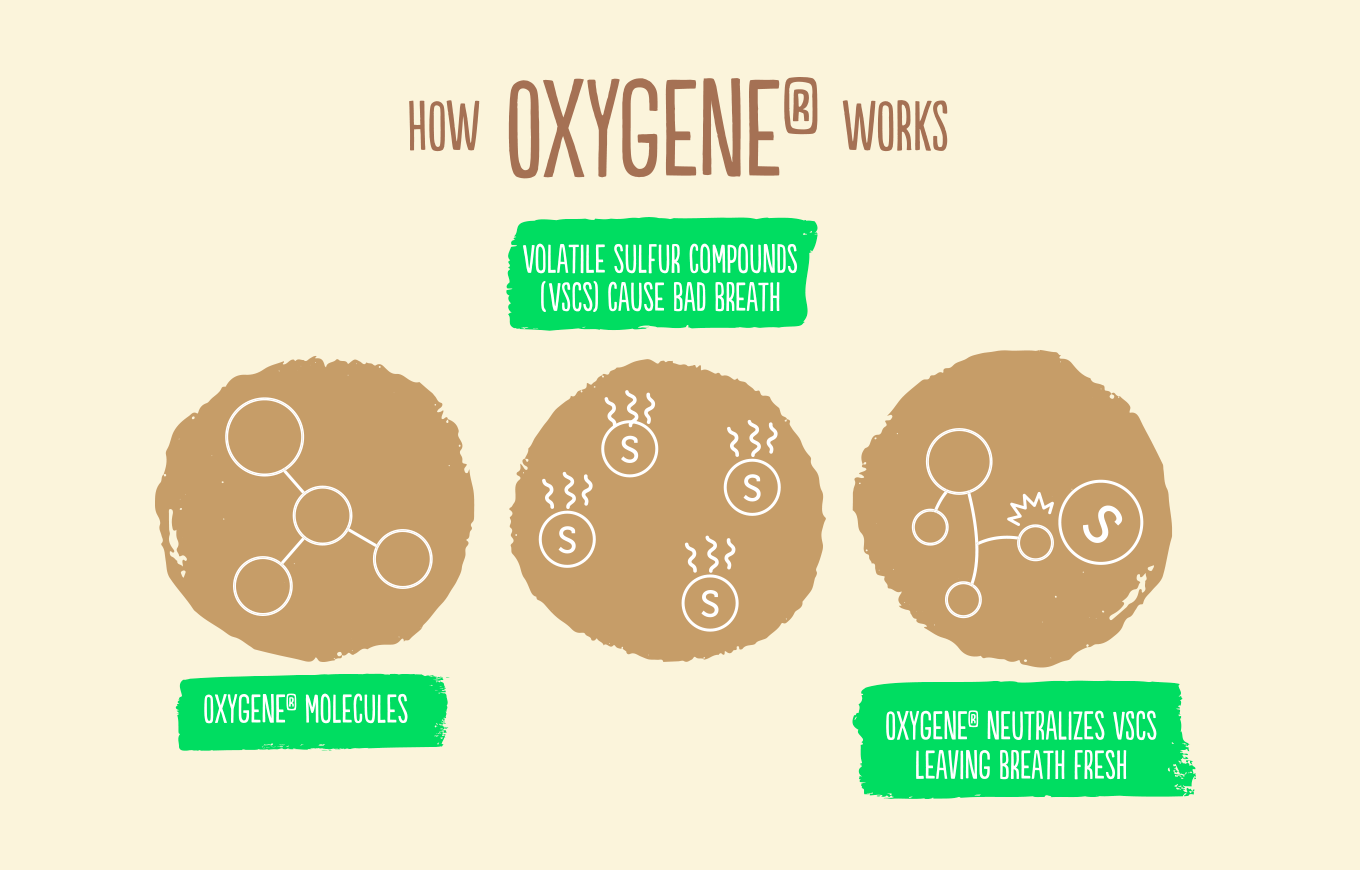 How Oxygene Works