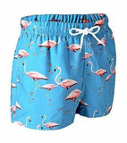 Pink Flamingos Bathing-Suit Board-Shorts - d'143 Men's Clothing