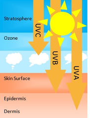 a research on 3 types of ultraviolet radiation uva uvb and uvc Department of agriculture's uvb monitoring and research program at  many types of cancer  components of ultraviolet radiation (uva, uvb, uvc) .