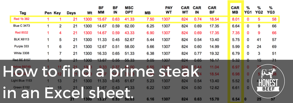 How to find a prime steak in an excel sheet.