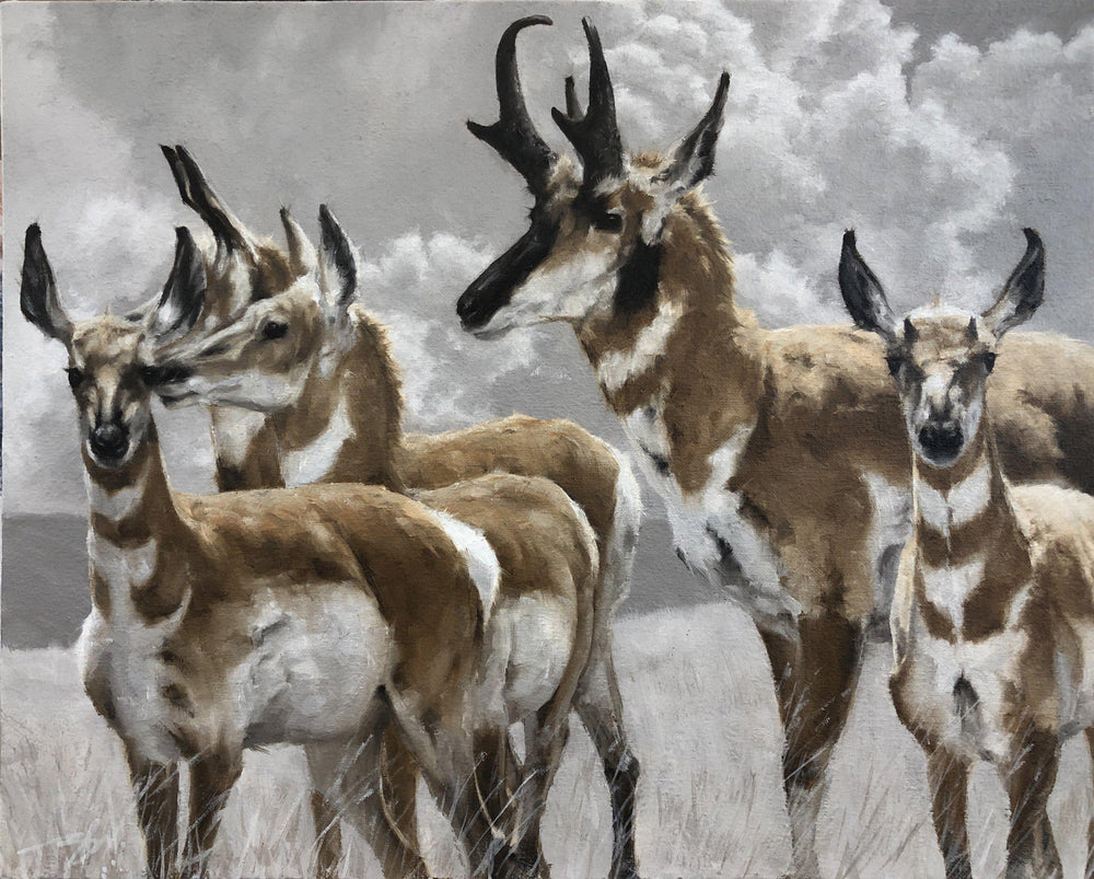 Pronghorn-Painting-Doyle Hostetler-Sorrel Sky Gallery