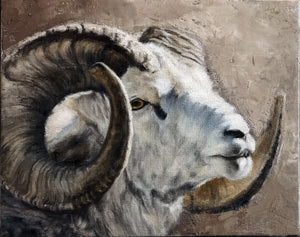 Stone Sheep Portrait-Painting-Doyle Hostetler-Sorrel Sky Gallery