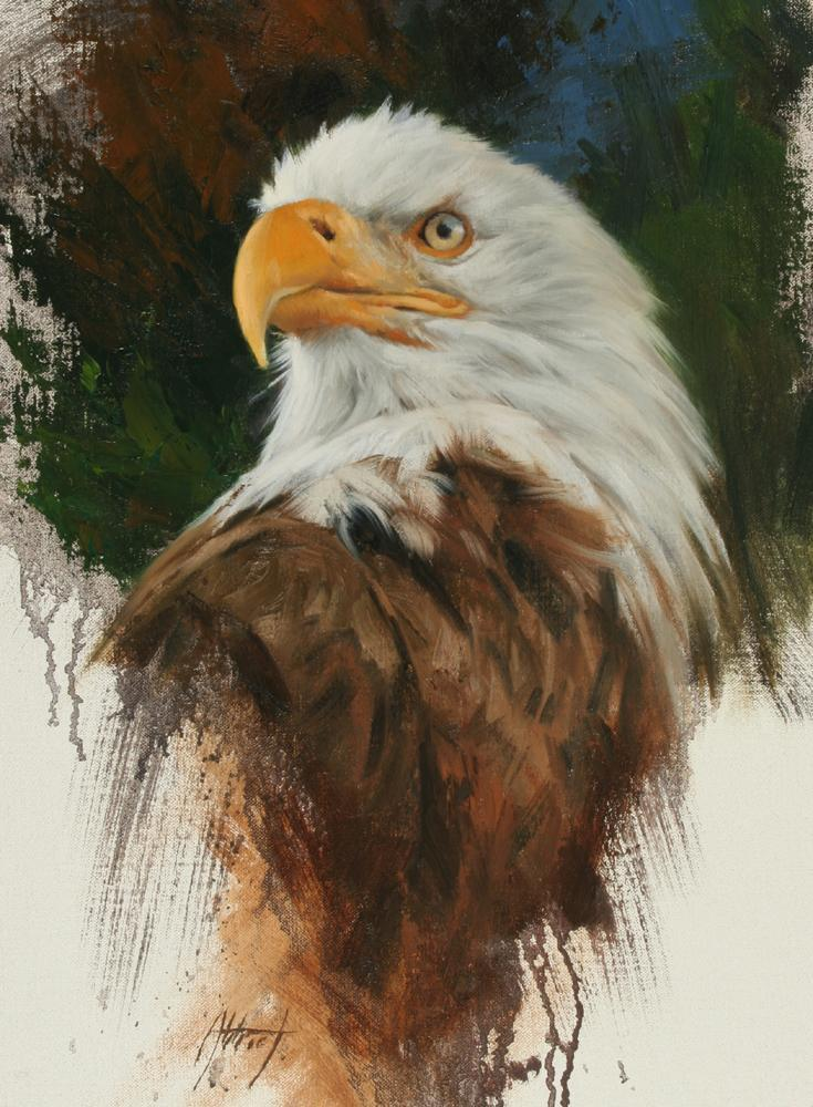 Edward Aldrich-Bald Eagle Portrait-Sorrel Sky Gallery-Painting